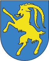 Stadt Hohenems -Demokratie